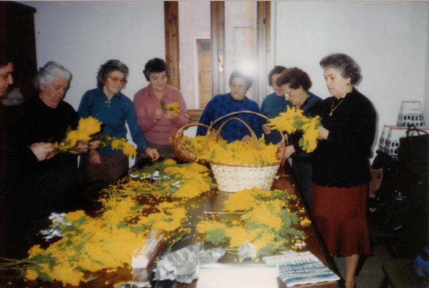 Marzo 1990: Lavorazione della mimosa